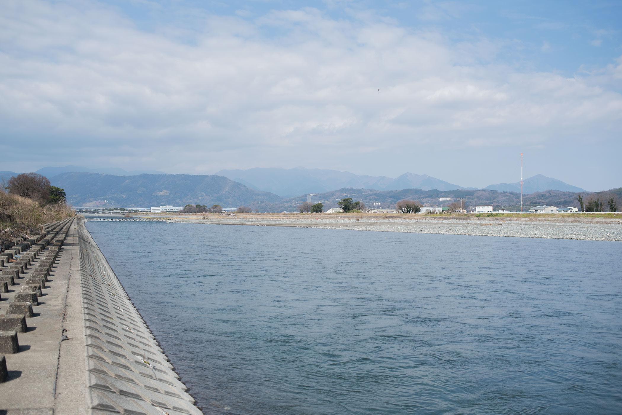 3月1日 酒匂川